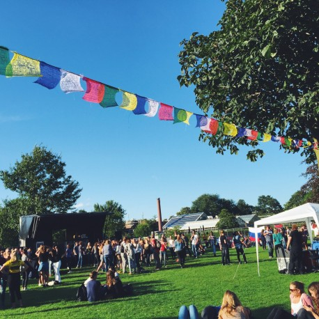 Intree Festival – Intree Festival